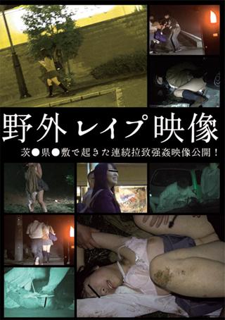 【アダルト動画】野外レ〇プ映像のトップ画像